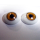 GLASS REAL EYES
